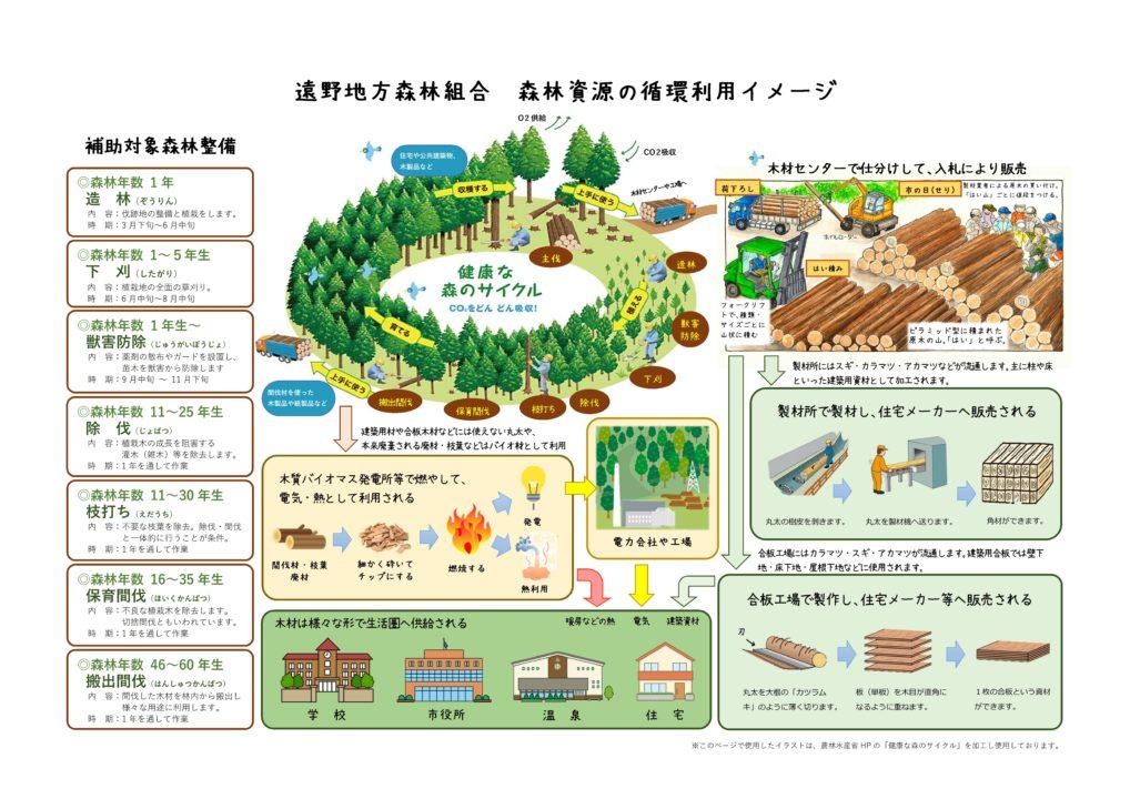 遠野地方森林組合 森林資源の循環利用イメージ